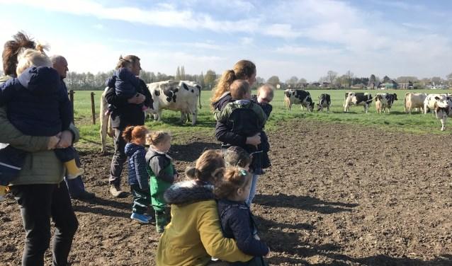 Op tweede paasdag 22 april onthullen twee deelnemende boerenbedrijven hun Land van Cuijk Boert Bewust-bedrijfsbord.