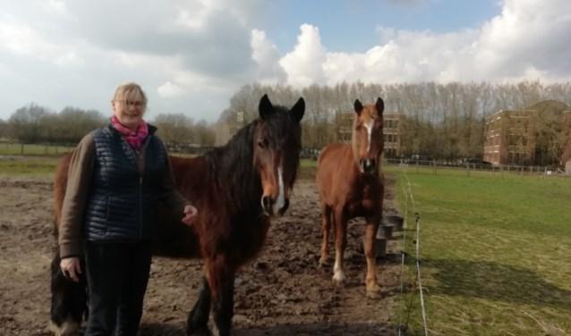 Patricia zoek een nieuwe werkplek voor haar paarden nu Landgoed Lindenhorst in Driebergen wordt verkocht. FOTO: Marcel Bos