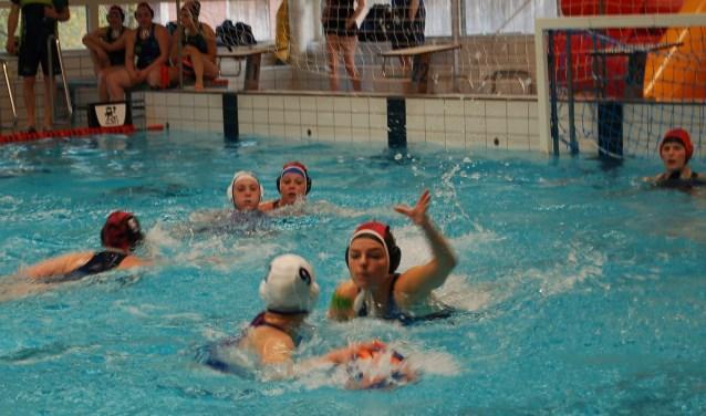 De polosters van Zwemclub Losser in actie tegen EZC 1. Foto: Rik van Rijkom