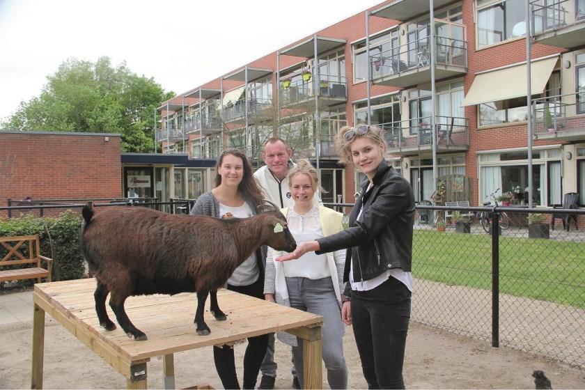 Nina Boelens (links) met een van de geitjes en verder (vlnr): Wim van Ingen (Begeleid Wonen Westervoort), Melissa Vroom (ABC-Zorgcomfort) en Marloes Peters (Begeleid Wonen Westervoort).