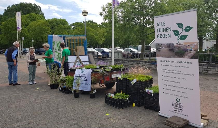 Lever een tegel uit de tuin in tijdens de Bloemetjesmarkt op tweede Pinkstermarkt (Foto: PR)