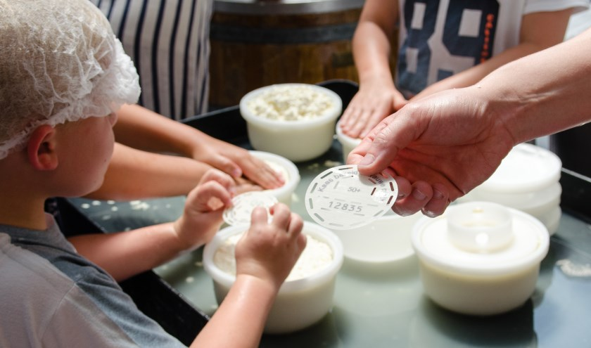 Naast rondleidingen zijn er verschillende workshops kun je aan de slag om je eigen, overheerlijke kaas te maken. (Foto: Privé)