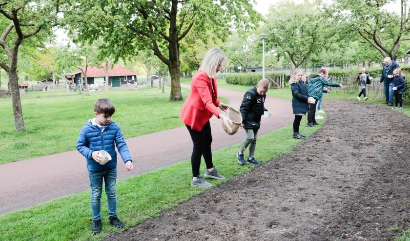 Ruim 150 kinderen hebben met hulp van onder meer wethouders bloemenzaad gestrooid in het kader van de actie 'Bloemenlint'.