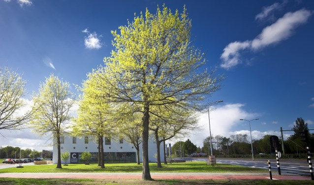 De Cacaofabriek in Helmond. Foto: Visit Brabant.