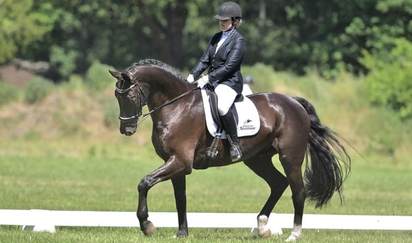 Paardensport Sint Anthonis houdt een dressuurwedstrijd.