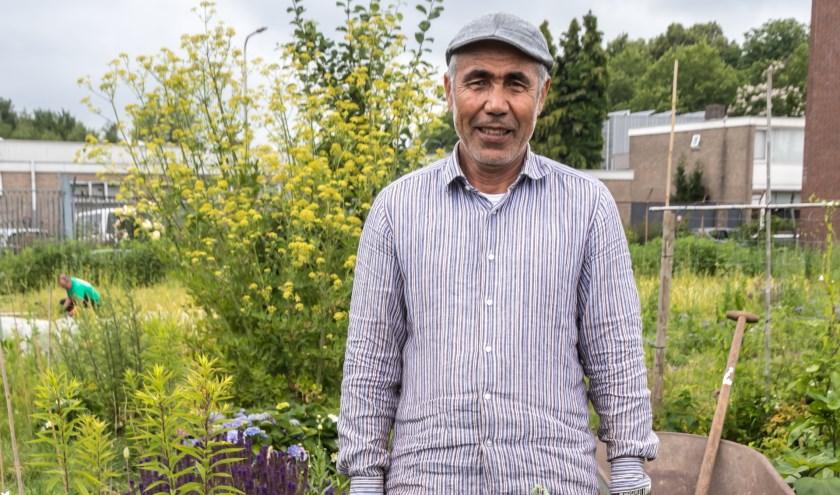 50 vrijwilligers en een aantal dagbesteders telen onder professionele begeleiding groenten, bloemen en kruiden. foto: Michaël Molenaar
