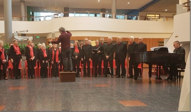 De Nachtegaal tijdens een uitvoering in Wissehaege.