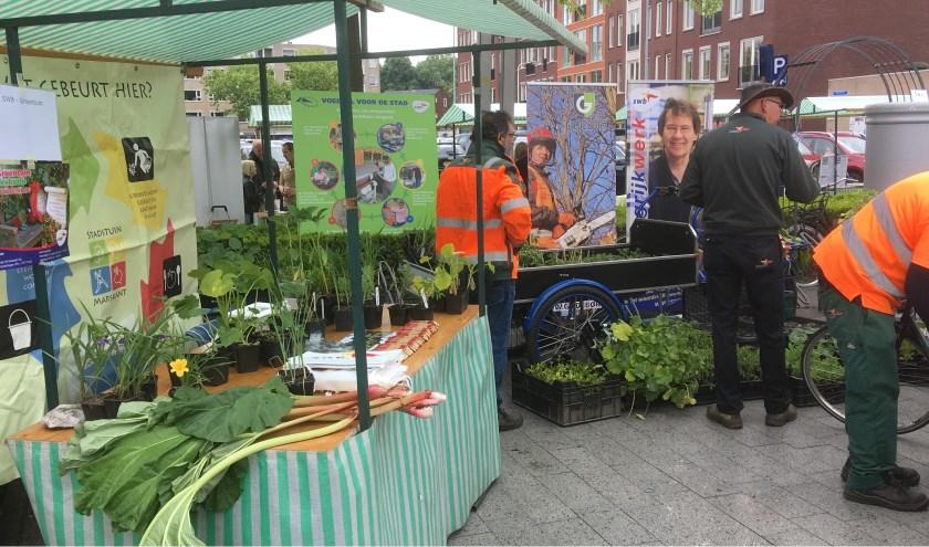 Kom voor inspiratie en informatie naar de Groenmarkt! Een tuin met veel groen zorgt voor een betere waterafvoer en meer biodiversiteit. Foto: Gemeente Hengelo