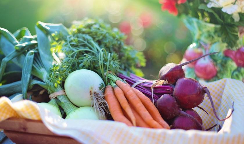 biologisch geteelde groenten