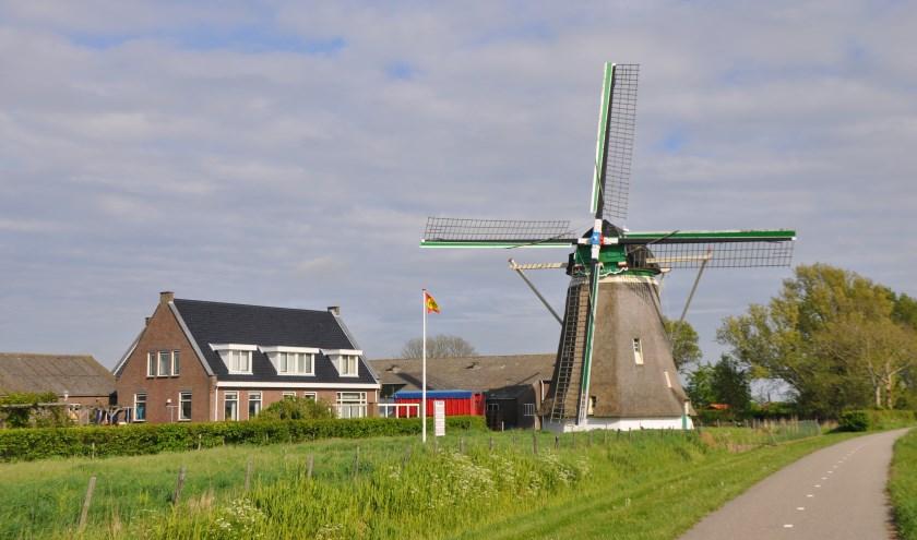 Molen De Zwaan in Moriaanshoofd is dit jaar 100 jaar in het bezit van de familie Verhage FOTO: Anneke Flikweert