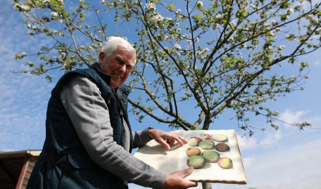 """Hennie: """"In dit boek uit de 18e eeuw staat deze appel beschreven. Het is de Enkele zure paradijs, niet te verwarren met de dubbele!"""" (foto: Feikje Breimer)"""