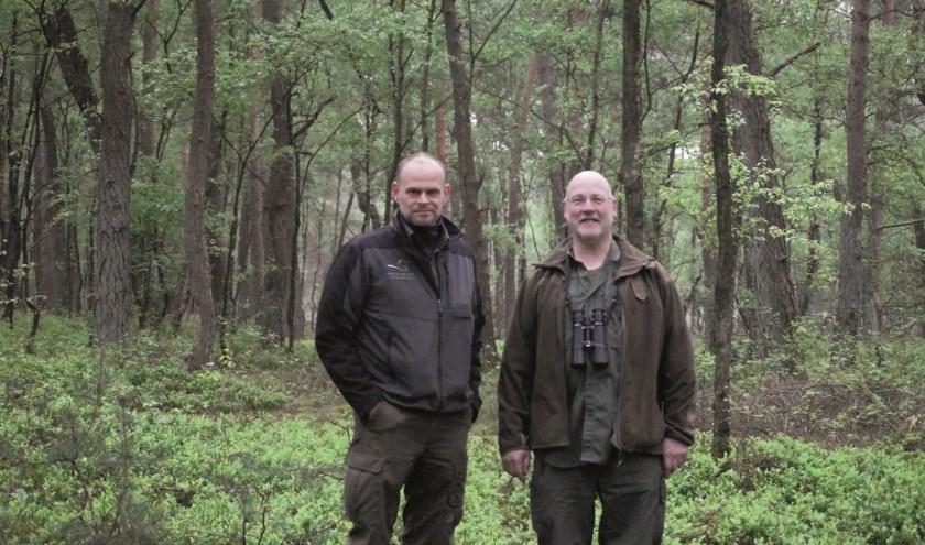 Ronald Stiefelhagen en Chris Achterberg doen onderzoek naar dassen op de Utrechtse Heuvelrug. Foto: Ellis Plokker