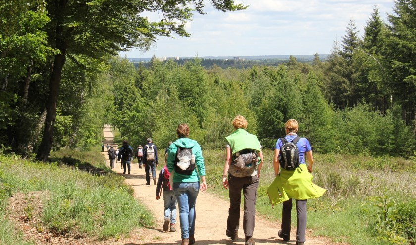 Wandelen voor het goede doel en ontdekken wat deze omgeving voor moois te bieden heeft!