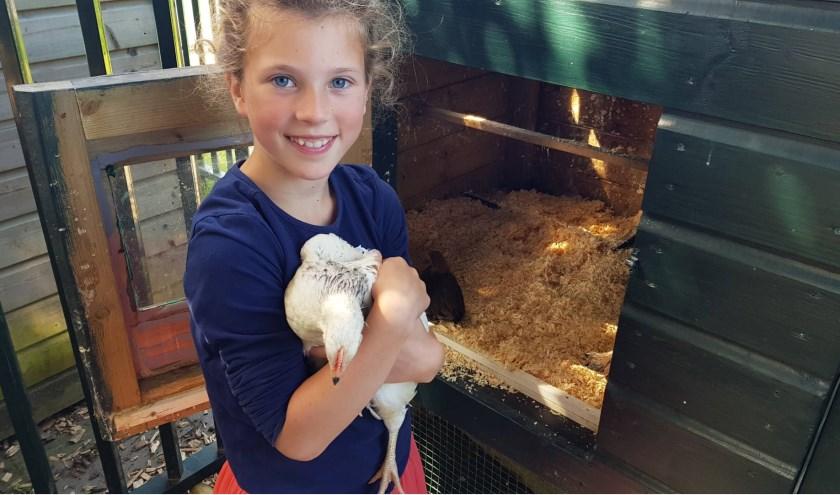 Madelief brengt vier kippen naar de Sabina van Egmondschool.