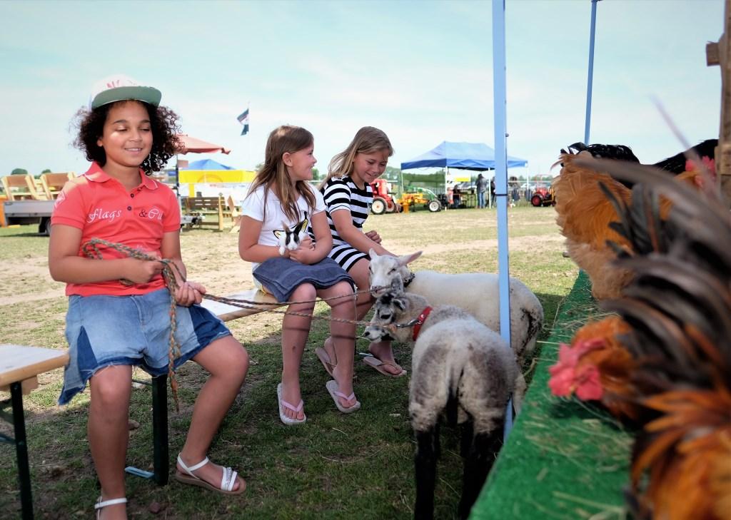 Isa van 9 links vindt schapen wel leuk Michela een konijn maar Marissa van 10 twijfelt nog even.  © Persgroep