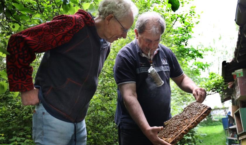 Christ Raaijmakers  en Henk Jansen hebben een gedeelde passie voor bijen. (foto: Marco van den Broek)