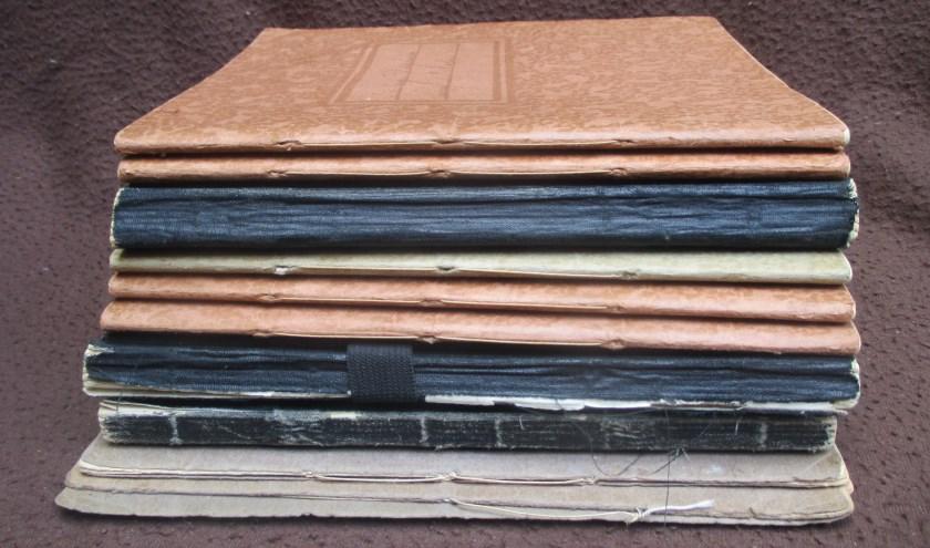 De elf dagboeken.