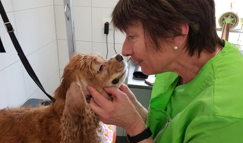 Marjolijn viert het 25-jarig van haar hondentrimsalon Dream met een leuke winactie op Facebook. Eigen foto.