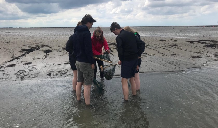 Studenten bezig met onderzoek op Schiermonnikoog.(Foto: Aeres MBO Ede)