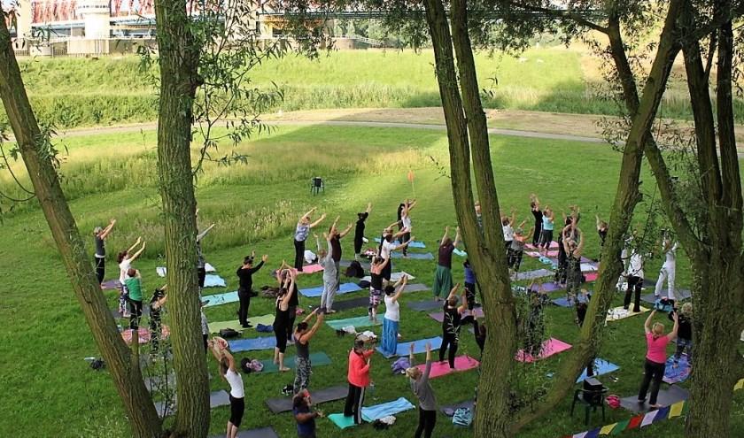 Doe ook mee met de gratis yoga-les op het grasveld naast de Spijkenisserbrug op Wereld Yoga Dag, vrijdagavond 21 juni van 19.00-20.15 uur. Dit evenement wordt mogelijk gemaakt door NJOYoga