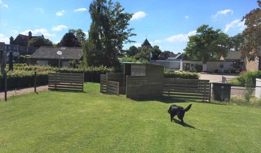 De hondenheuvel wordt momenteel gebouwd. (foto: eigen foto)