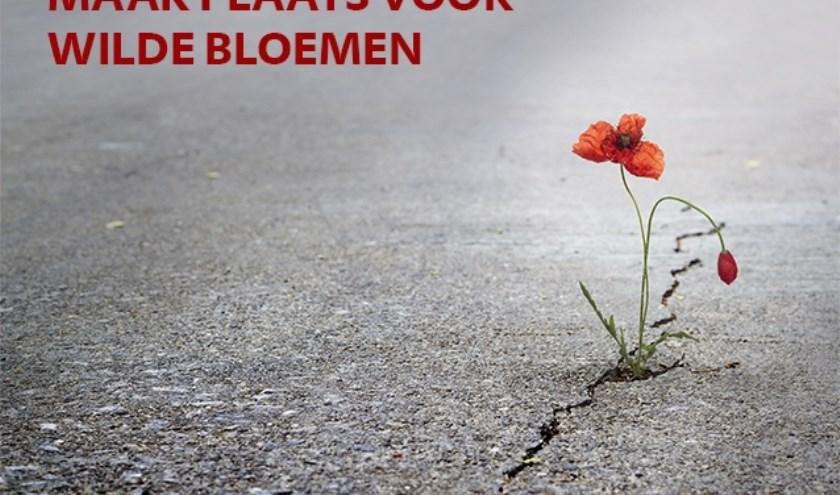 wilde bloem met tekst