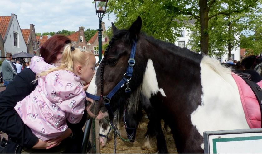 Wat een lief paard.
