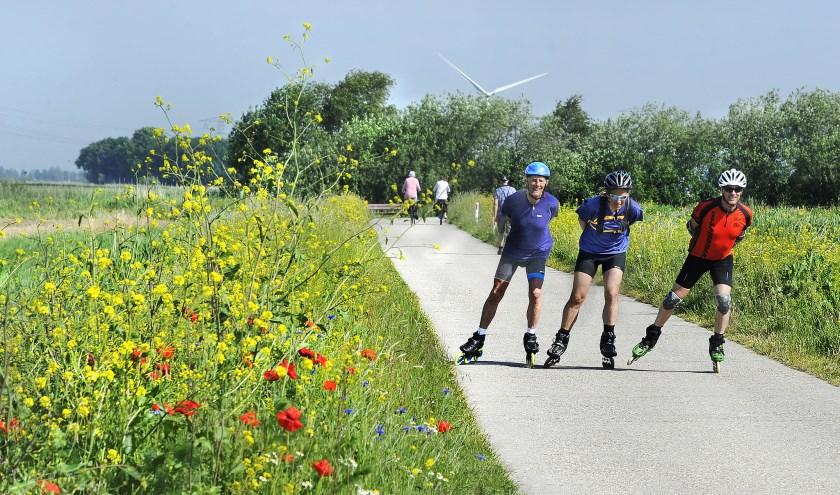 Oefentochtjes van 80 en 120 kilometer door de Friese dreven. De 72-jarige Nico Veldman uit Haskerdijken wil met zijn kameraden Rob Flatin en Theo Sterzl in één dag de Elfstedentocht skeeleren.