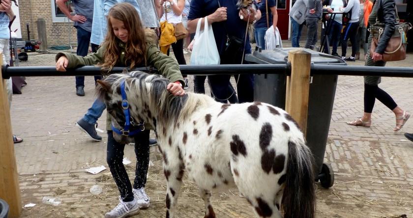 Paardenmarkt Heenvliet 2018. Foto: Roel van Deursen