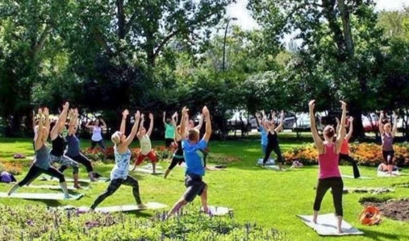 Vier keer Yoga in de zomervakantie. Met mooi weer buiten in het parkje, anders binnen. Opgave vooraf is verplicht in verband met zaalhuur en kan via: zielekaarten@gmail.com.