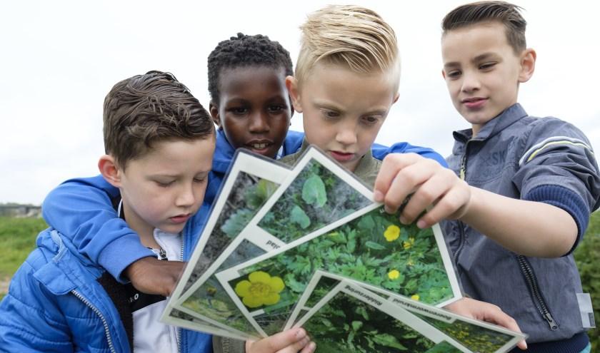 Jongeren leren over de natuur.