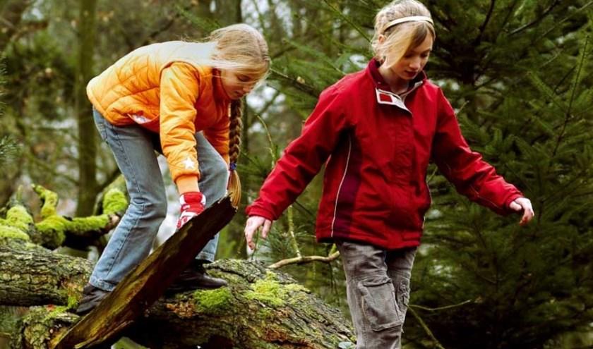 Kinderen ontdekken en beleven van alles met hun (groot)ouders, tijdens de bossafari op de Sallandse Heuvelrug.