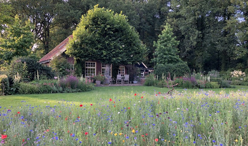 Een van de tuinen is die van de familie Lubberink, vijf jaar geleden winnaar van de verkiezing van mooiste plattelandstuin in Haaksbergen en Berkelland.
