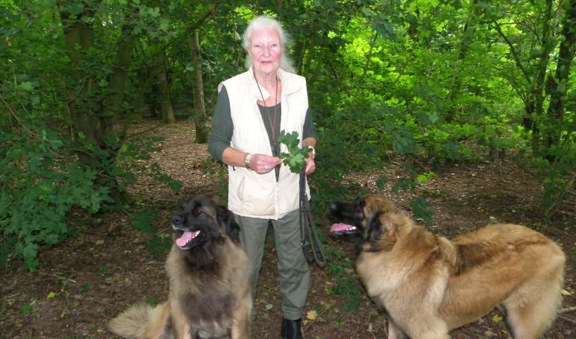 Etha van Egmond komt dagelijks met haar honden in het Gouwebos, maar is bezorgd om de eikenprocessierups.