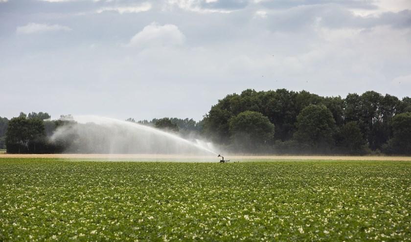 Sinds 18 juli is het al verboden om water te halen uit beken, rivieren en vijvers om bijvoorbeeld te sproeien. (foto: PR)