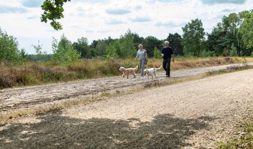 Buiten de loosloopgebieden moeten honden aangelijnd zijn. Baasjes die hun viervoeter aan de lijn hebben, krijgen een beloning.