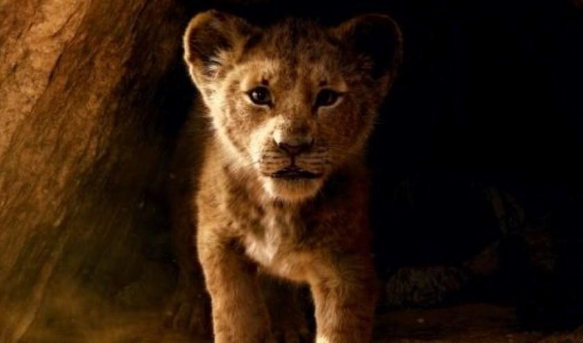 Kunt u de prijsvraag beantwoorden over The Lion King?