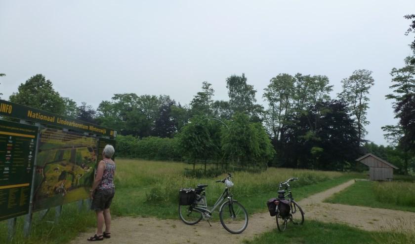 Lindenarboretum bij Corle