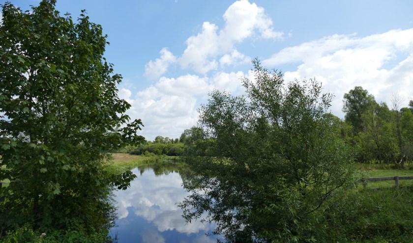 De Tongelreep met voldoende water. Foto: Waterschap de Dommel.