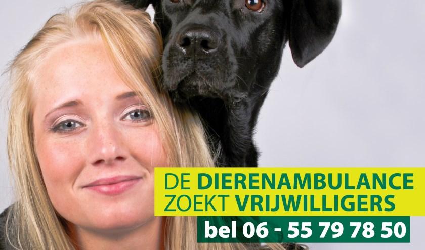 vrijwilliger dierenambulance