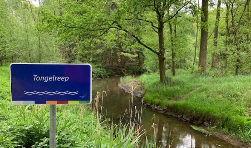Waterschap De Dommel houdt, in samenwerking met Dommel Visrecht, een excursie bij de stuw Driebruggen aan de Zeelberg in Valkenswaard.