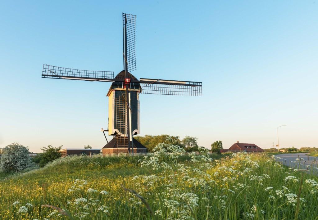 De Batenburgse molen. Ton Rothengatter © Persgroep