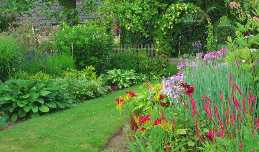 De Valk inRuurlo is een romantische, landschappelijk tuin van ruim 5.000 m2 met heel veel borders.