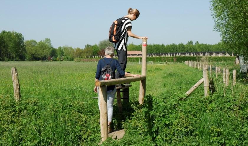 Wie de opening van klompenpad in Oosterwolde bijwoont, kan aansluitend het pad lopen. (Foto: Stichting Landschapsbeheer Gelderland )