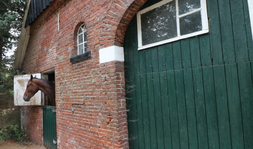 Eddy maakte tijdens zijn wandeling van Beuningen naar Denekamp kennis met boerderijen en hun bewoners.