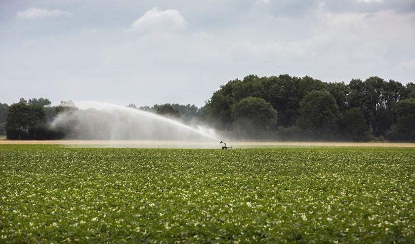 Bij de waterschappen Rijn en IJssel en Vechtstromen is het voor het tweede jaar op rij net zo droog als in 1976.