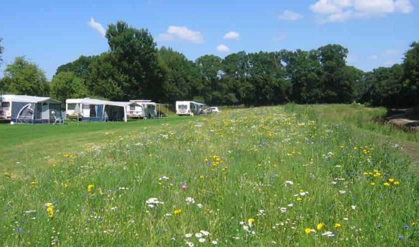 """Petra en René uit Denekamp staan met hun caravan op camping Het Wargerink in Buurse. """"Echt een aanrader!"""""""