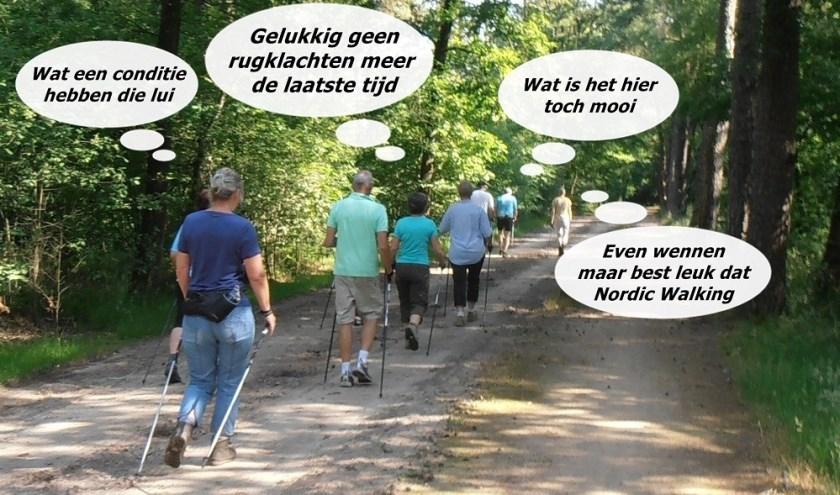 Een groep 'walkers' onderweg in Winterswijk.