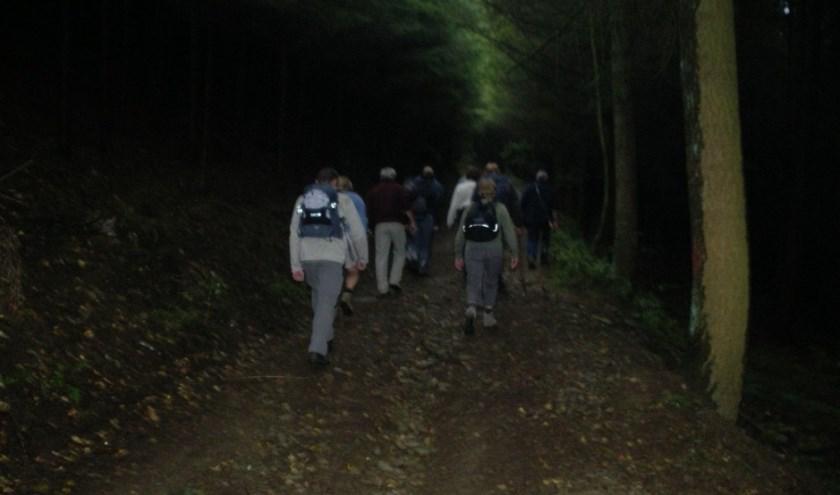 Met een gids mogen deelnemers het natuurgebied verkennen tijdens een wandeling van ongeveer vijf kilometer. (Foto: Staatsbosbeheer)