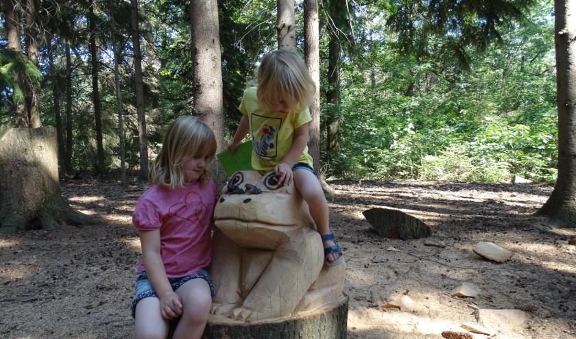Eline en Daphne Kuiphuis uit Holten vermaken zich prima op het nieuwe Groote Kikkerpad. (Foto: Natuurmuseum Holterberg)